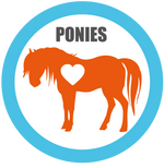 Ponies for Foster
