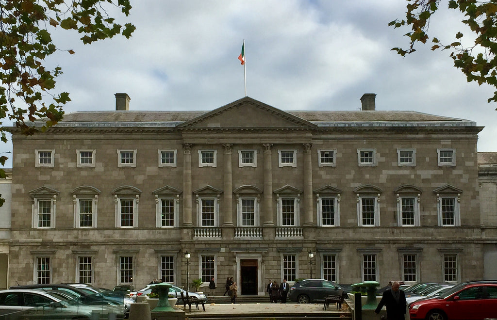 MLHR present the Dáil Breifing at Leinster House - November 16th