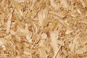 Donate a bale of Shavings