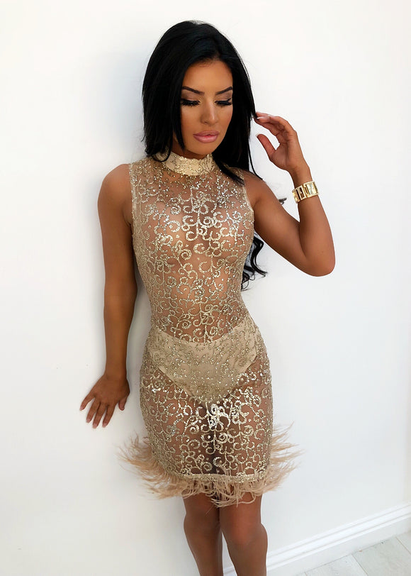 'Barely There ' Glitter Mesh Dress - Gold