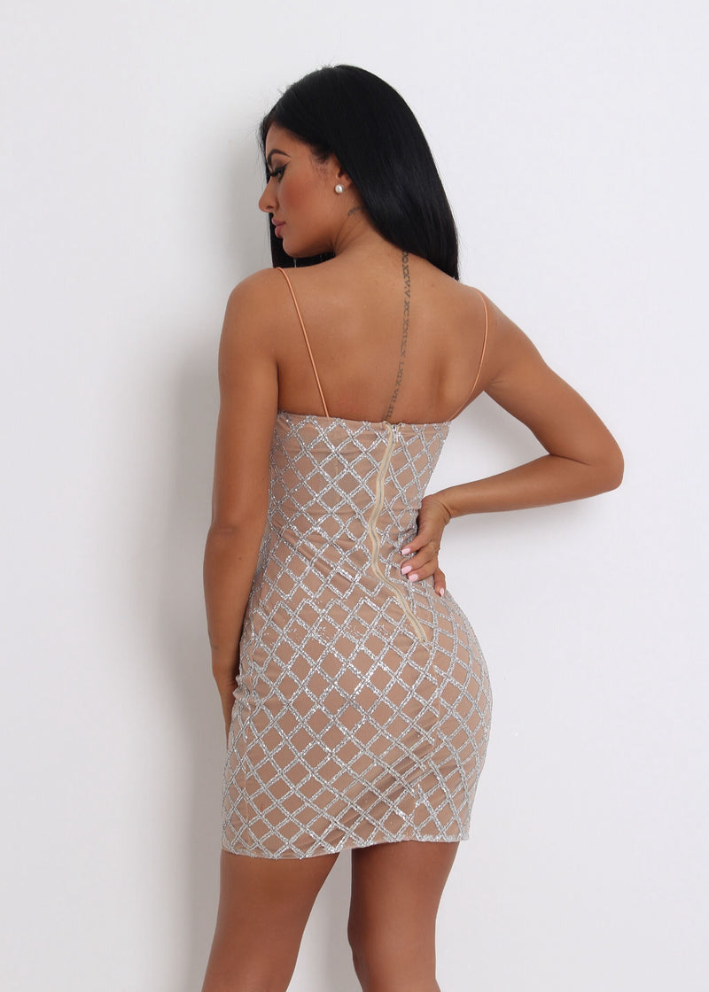 'Raise A Glass' Glitter Mesh Mini Dress