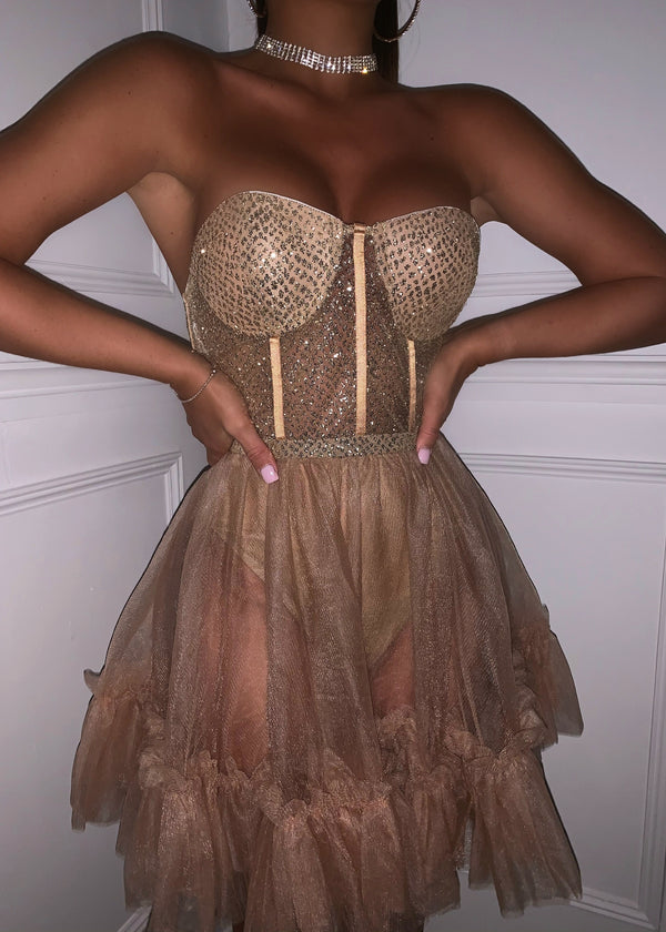 Dance In Twilight Tulle Dress - Nude
