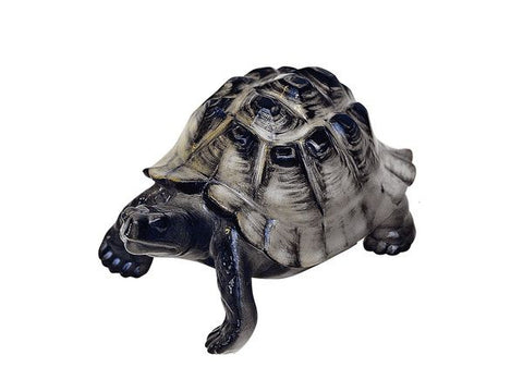 Turtle dark shell 80 mm