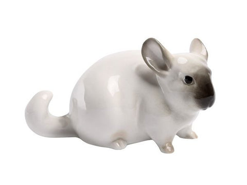 Chinchilla small