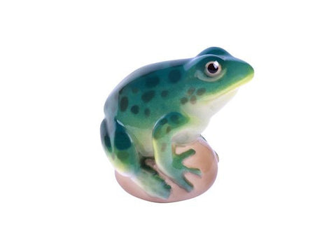 Pond Frog Turquoise