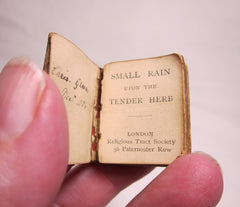 Small Rain Upon the Tender Herb