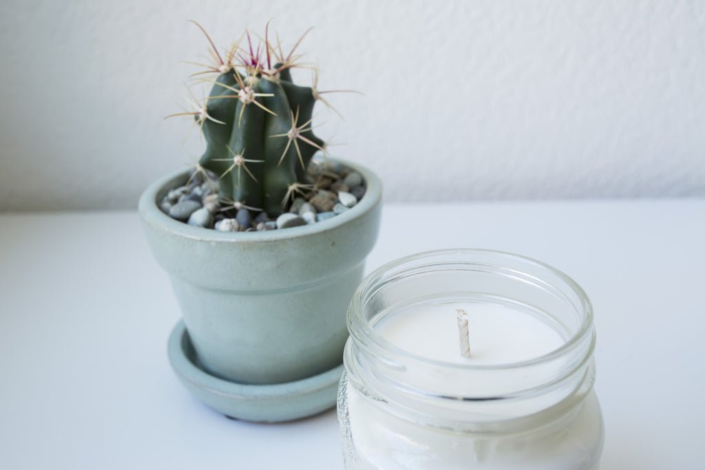 Cactus Flower 8 oz Soy Blend Candle