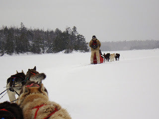Boundary Waters Dogsled Trip