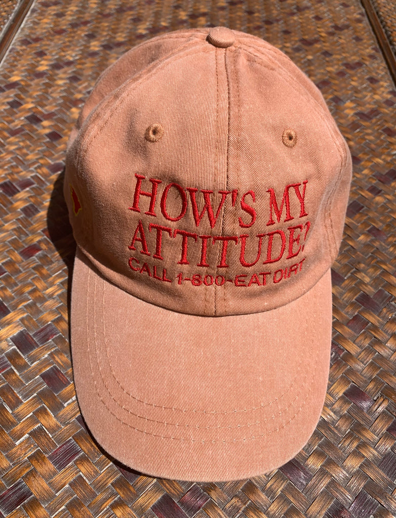 How's My Attitude Hat