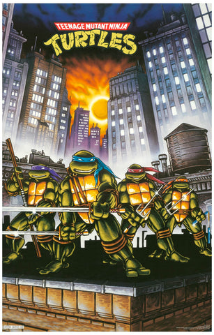 Teenage Mutant Ninja Turtles Comic Book Poster 11x17