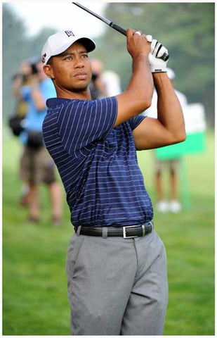 Tiger Woods Golf Pro Poster