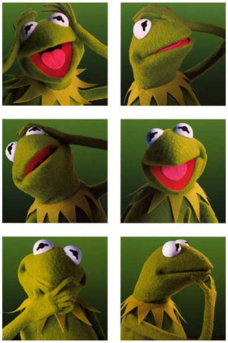 Muppets Kermit the Frog Poster