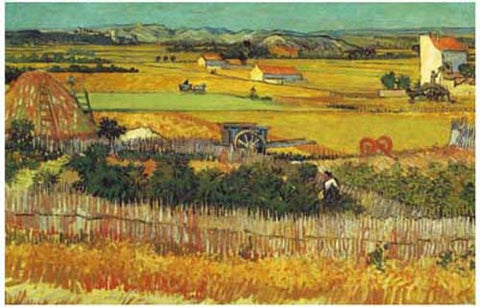 Vincent Van Gogh Wheat Fields Poster