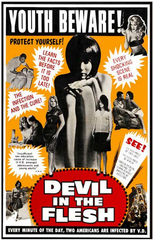 Devil in the Flesh Sex Education Collage 11x17 Poster