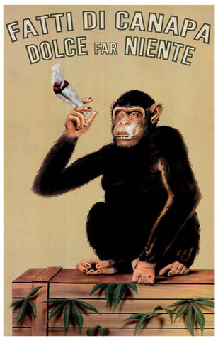 Fatti Di Canapa Smoking Monkey Poster