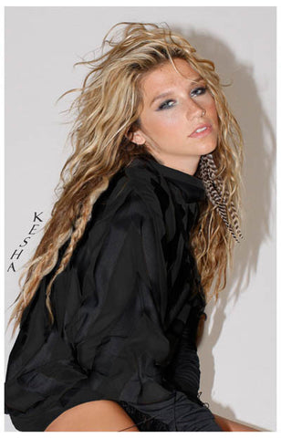 Kesha Ke$ha Portrait Animal Blah Blah Blah 11x17 Poster