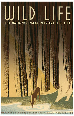 WPA Poster Art Wild Life US National Parks 11x17 Poster