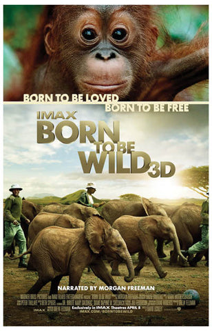 Born to Be Wild Nature Documentary IMAX 11x17 Poster