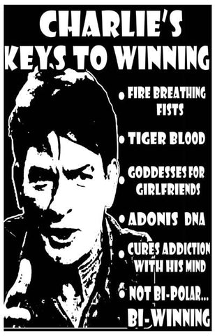 Charlie Sheen Charlie's Keys to Winning 11x17 Poster