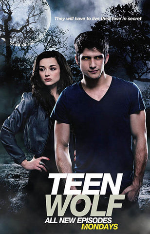 Teen Wolf 2011 TV Series Scott and Allison 11x17 Poster