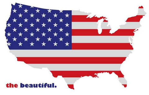 America The Beautiful Poster 11x17