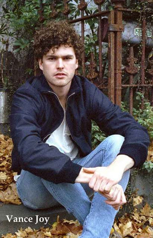 Vance Joy Autumn Leaves Portrait Poster 11x17