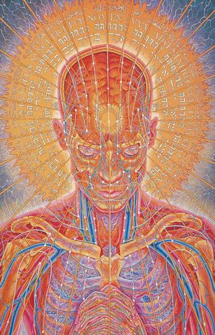 Alex Grey Art Poster