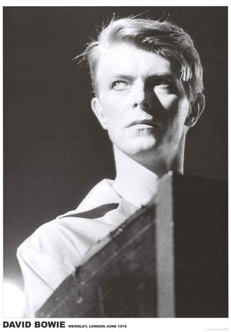 David Bowie Portrait Poster