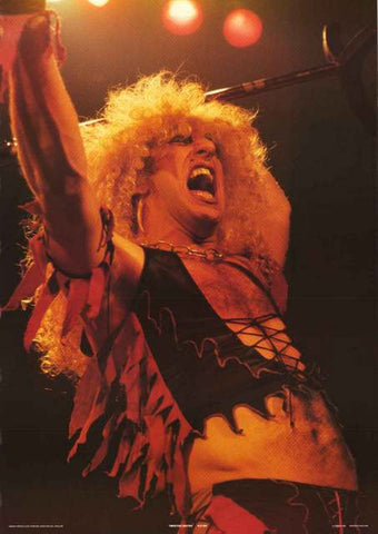 Twisted Sister Dee Snider 1984 Poster 25x35
