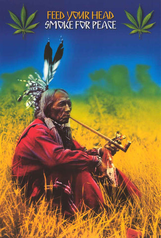 Native American Smoke for Peace Poster