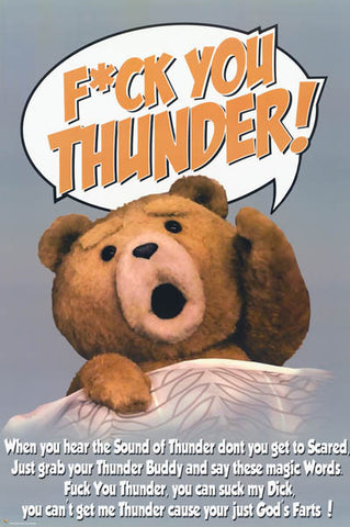 Ted Thunder Buddy Mantra Seth McFarlane 24x36 Poster