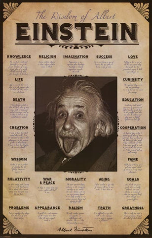 Albert Einstein Wisdom Quotes Poster