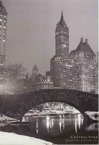 Manhattan Central Park Bridge Poster