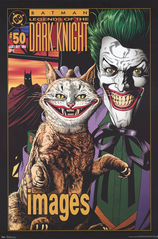 Batman The Joker with Cat DC Comics Poster