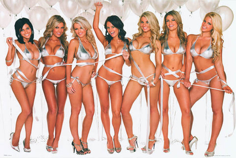 Birthday Girls Super Sexy Hot Party Chicks 24x36 Poster