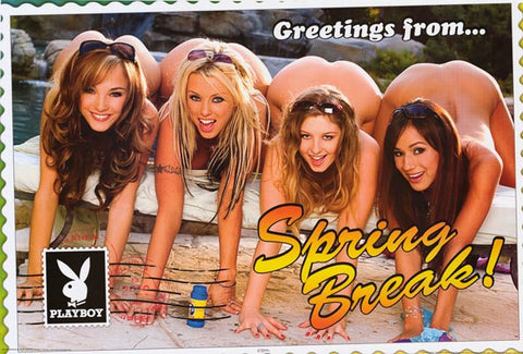 Playboy Ladies Greetings from Spring Break 24x36 Poster