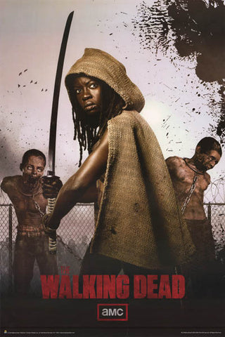 Walking Dead Michonne Poster