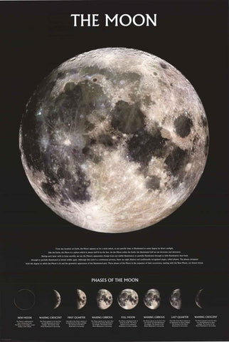 The Moon Lunar Phases Poster