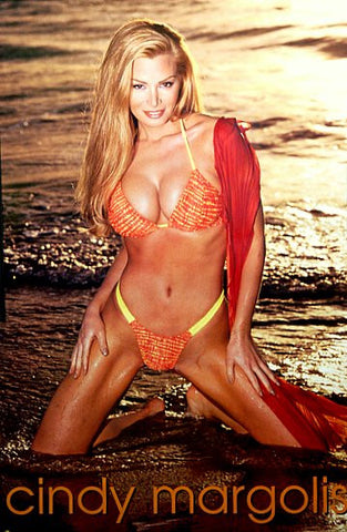 Cindy Margolis Bikini Pin-Up Poster