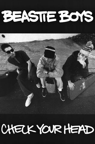 Beastie Boys Check Your Head Poster 24x34
