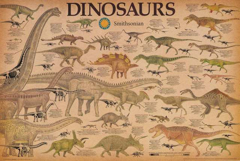 Dinosaurs Infographic Poster