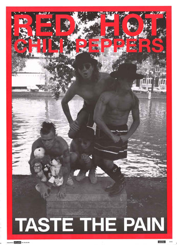 Red Hot Chili Peppers Taste the Pain Poster