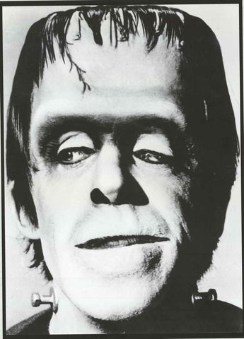 The Munsters Herman Munster Poster
