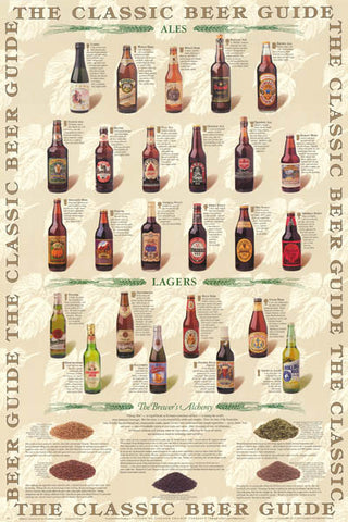 Beer Guide Infographic Poster