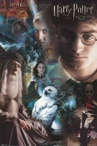 Harry Potter Half-Blood Prince Cast Collage 2009 Movie Poster 22x34