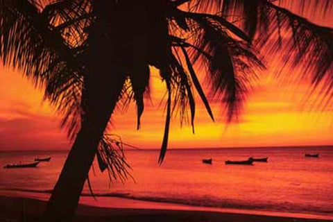 Tropical Beach Boats at Sunset Poster