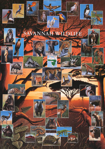 Wildlife of the African Savannah Poster