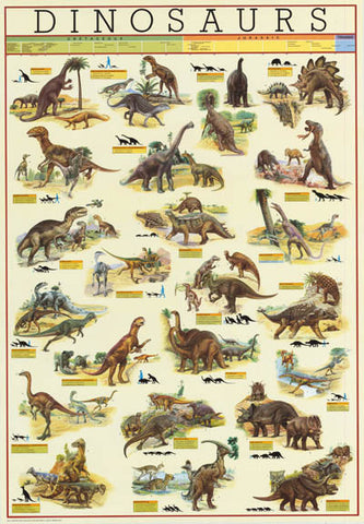 Dinosaurs Evolution Infographic Poster