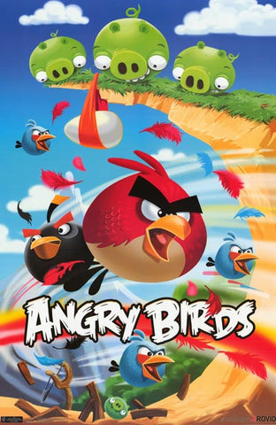 Angry Birds Vanquish Valley Rovio App Game 22x34 Poster