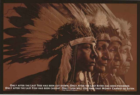 Native American Indian Quote Poster
